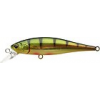 POINTER 65 SP Ghost Northern Perch